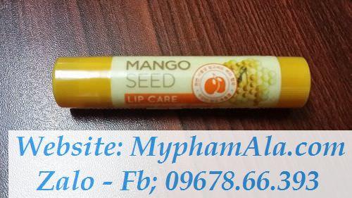 mangoseedlipcare