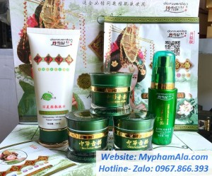 Bộ mỹ phẩm trị nám, tàn nhang, trắng da Danxuenilan Hoàng Cung Xanh (5in1)